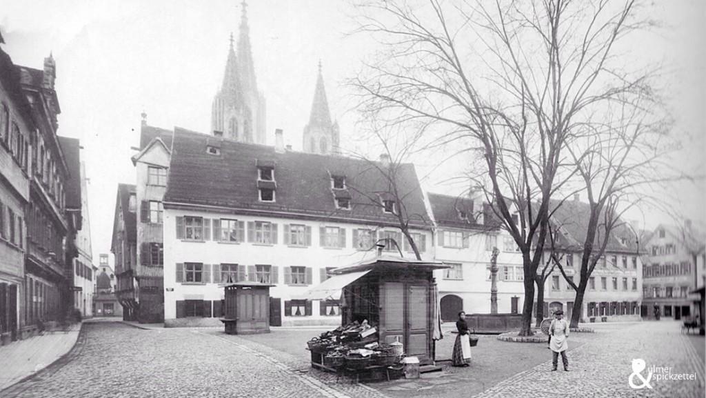 So sahen die Ulmer 1902 aus