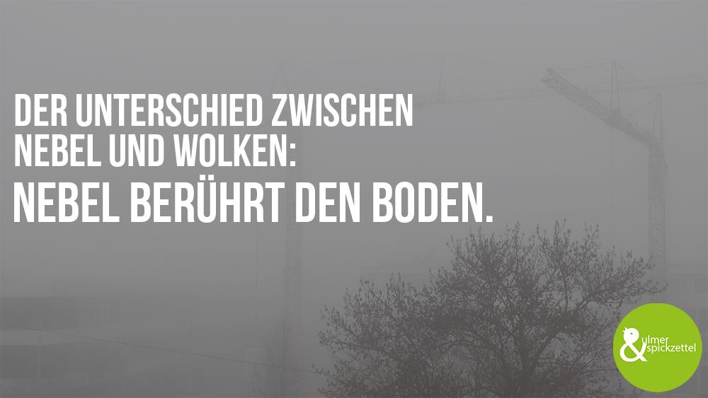 10 Fakten über Nebel