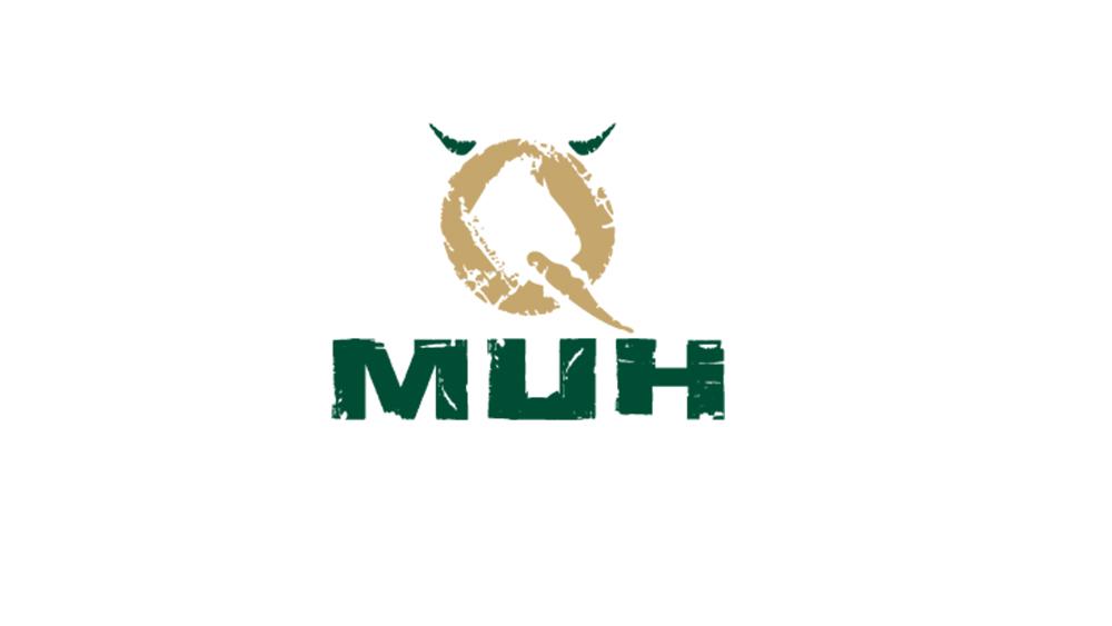 QHMUH: Koch (m/w)