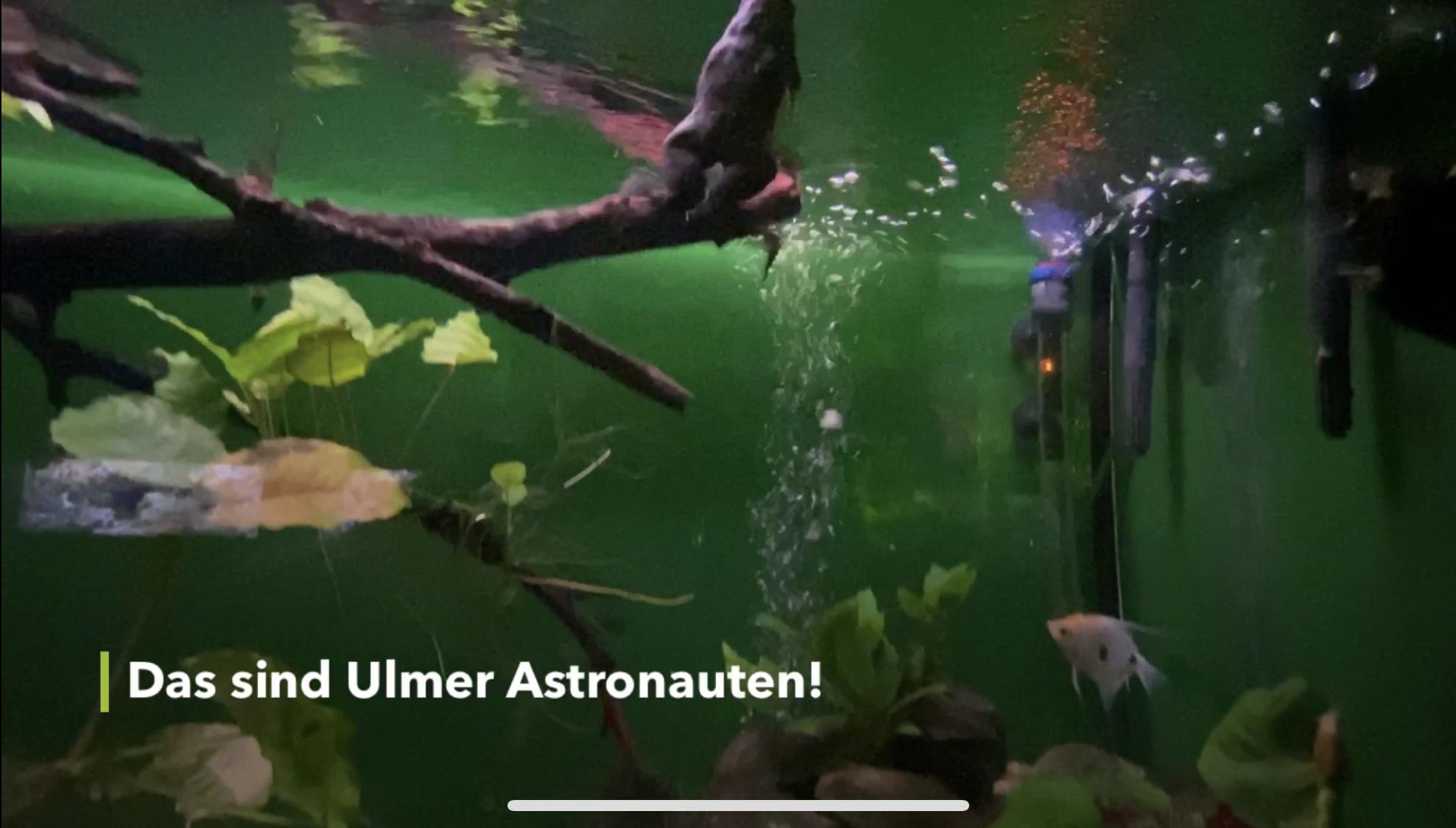 Ulmer Astronauten